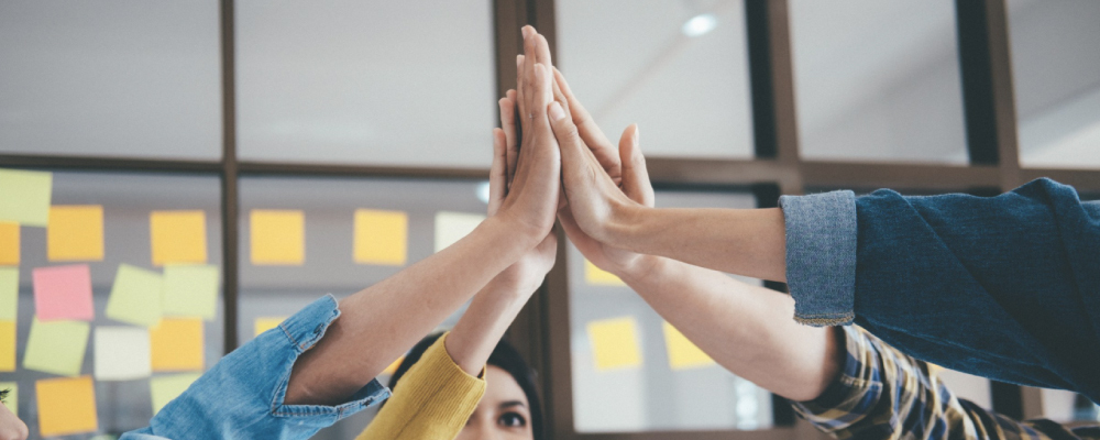 mãos juntas simbolizando um trabalho em equipe. imagem ilustrativa do conteúdo: o que são negócios com propósito