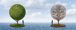 imagem ilustrativa do conteúdo sobre prosperidade como ferramenta para teorias criadoras de mercado